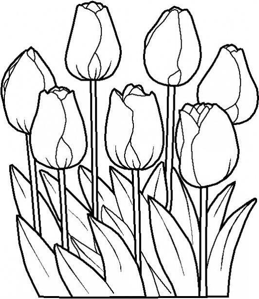El blog de la primavera: noviembre 2010