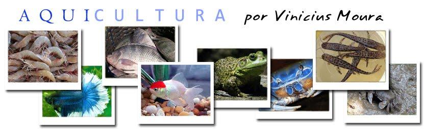 Aquicultura por Vinicius Moura