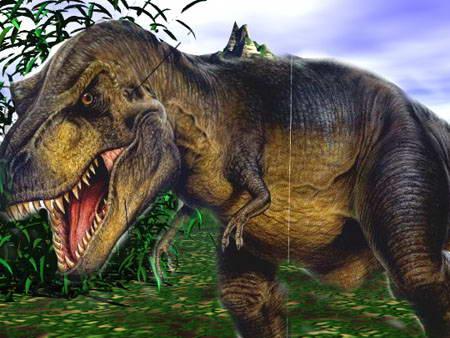 T rex 10 Spesies Hewan yang Menakjubkan yang telah Punah