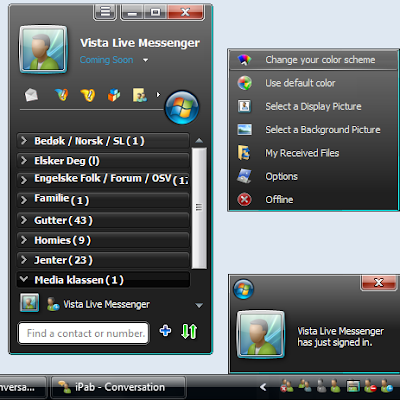 Windows Live Messenger skin