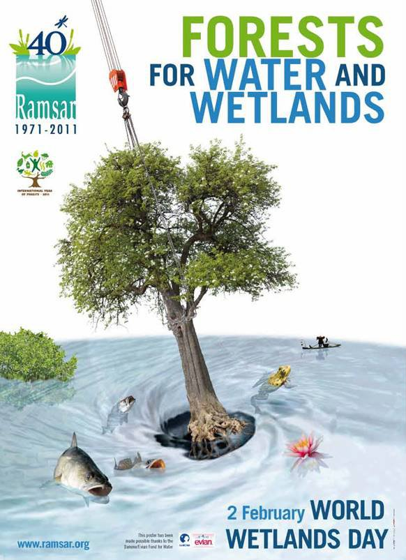 """Wetlands and Forests"": the theme for"