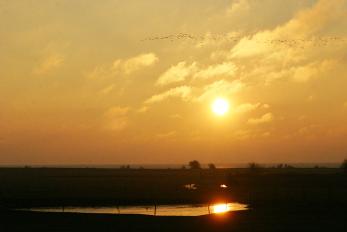 IJsselmeer Sunset