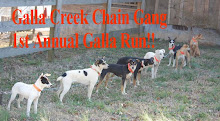 Galla Creek Chain Gang