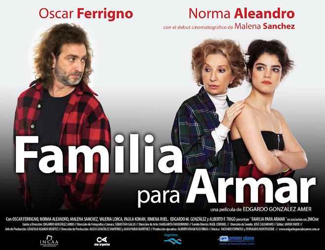 CINE - FAMILIA PARA ARMAR - EDGARDO GONZALEZ AMER