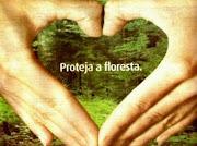 Proteja a Floresta
