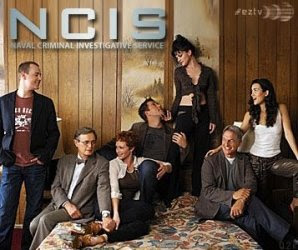 NCIS season 6 episode 12, NCIS 6.12