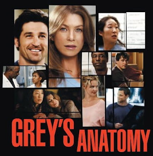 Grey's Anatomy season 5 episode 12: Grey's Anatomy 5.12