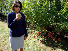 new england apple picking