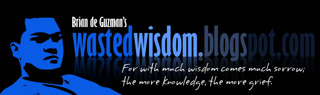 Wasted Wisdom Blogs by Brian de Guzman