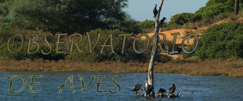 Observatório de Aves