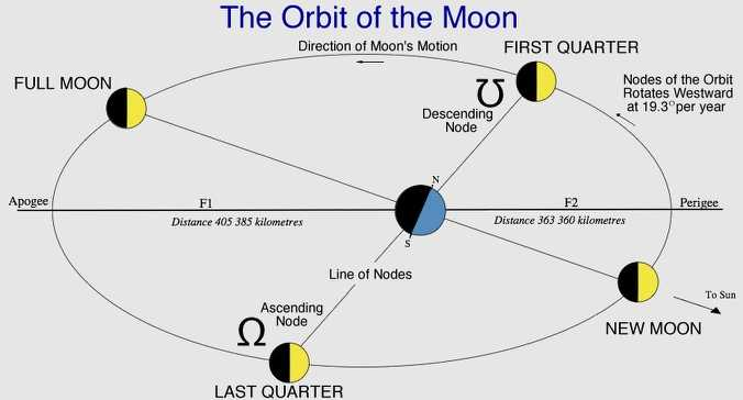 http://1.bp.blogspot.com/_S5J0U_EqSAE/SZO3-WHaN_I/AAAAAAAAAOc/Yvgl8uT2_vk/S760/Moon%27s+Orbit.jpg