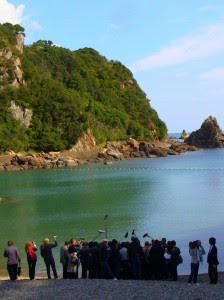 Taiji Ground Zero Detonates on Nov. 2nd