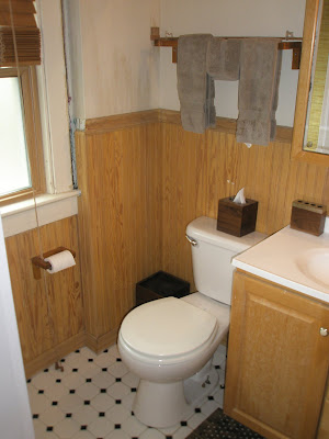 bathroom renovation before after form function