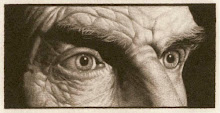 mirada de S.Beckett dibujada por Jan Peter Tripp