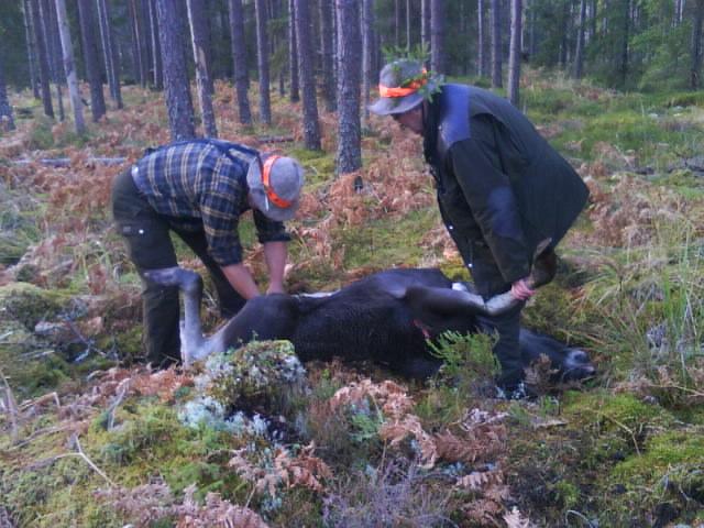 Sten-inge och Kjell-Åke
