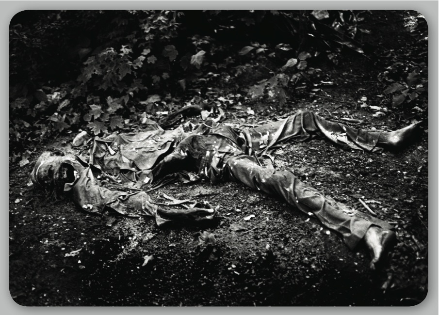 Human decomposition is a process that begins almost immediately after death