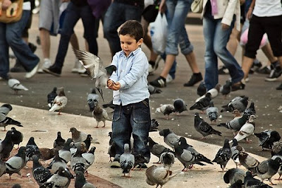 Kid feeding Pigeons at Plaça Catalunya - Carlos Lorenzo on Barcelona sights