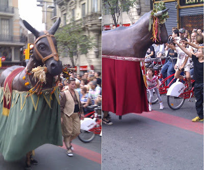 Traditional Animals  - Barcelona Sights