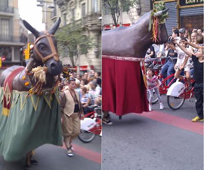 Traditional Animals  - Barcelona Sights