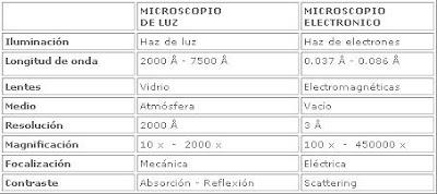 Tecnolog a m dica menci n morfofisiopatolog a y for Cual es el compuesto principal del marmol