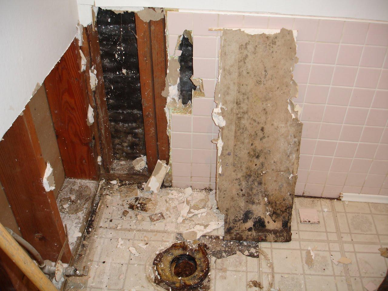 black mold bathroom 187 bathroom design ideas