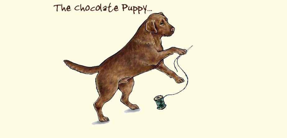 The Chocolate Puppy