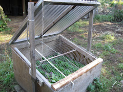 Greenhouse, Hoophouse, Coldframe, Row Cover Info. (Click↓)