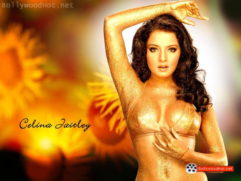 [celina-jaitley-hot-bollywood-actress-sexy-girl2.jpg]