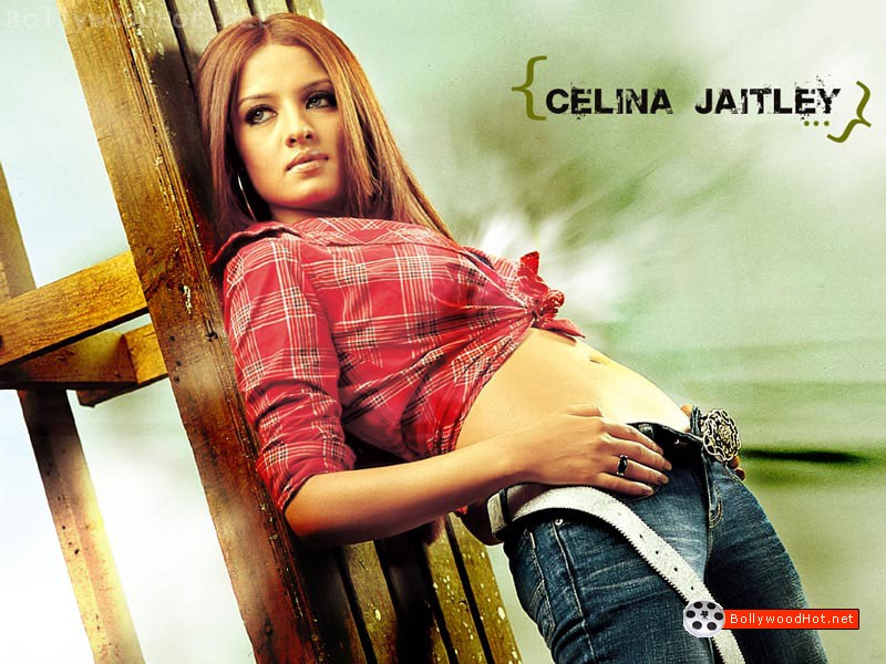 [celina-jaitley-hot-bollywood-actress-sexy-girl16.jpg]
