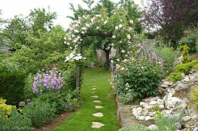 Le jardin des grandes vignes pivoine inconnue - Le jardin des grandes vignes ...
