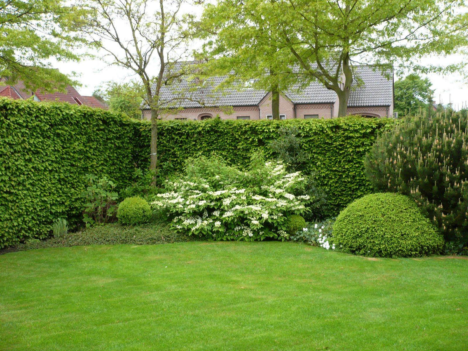 Balades dans de beaux jardins jardin de vic et anne janssen meyers belgique for Jardin a visiter