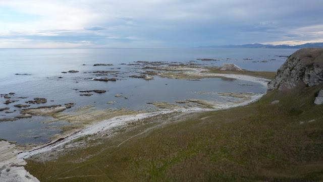 Y cerca de Kaikoura, en mar abierto, hallaremos ballenas esperma