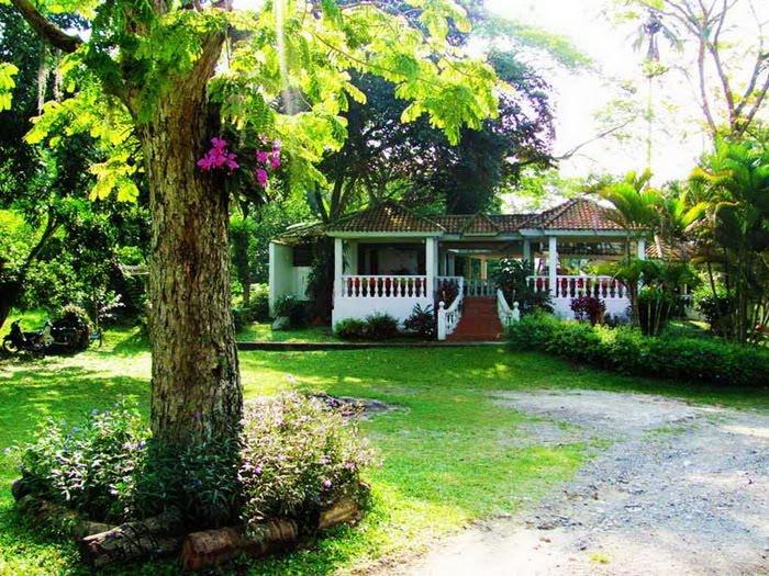 20 Beautiful Garden House Photos ~ Alpin Funny Picture!!. Alpin Funny Picture!! - blogger - wall picture design