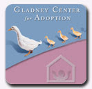 OUR ADOPTION AGENCY