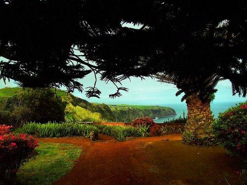 Azores, a living garden