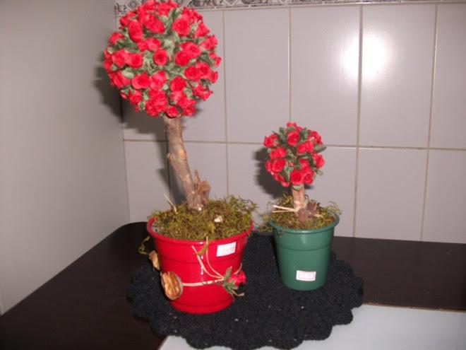 mimo,rosas vermelhas