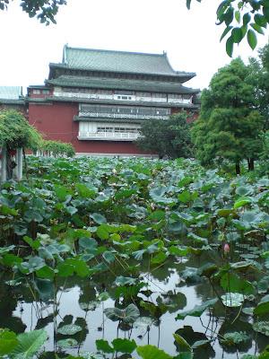 台湾の植物園での写真