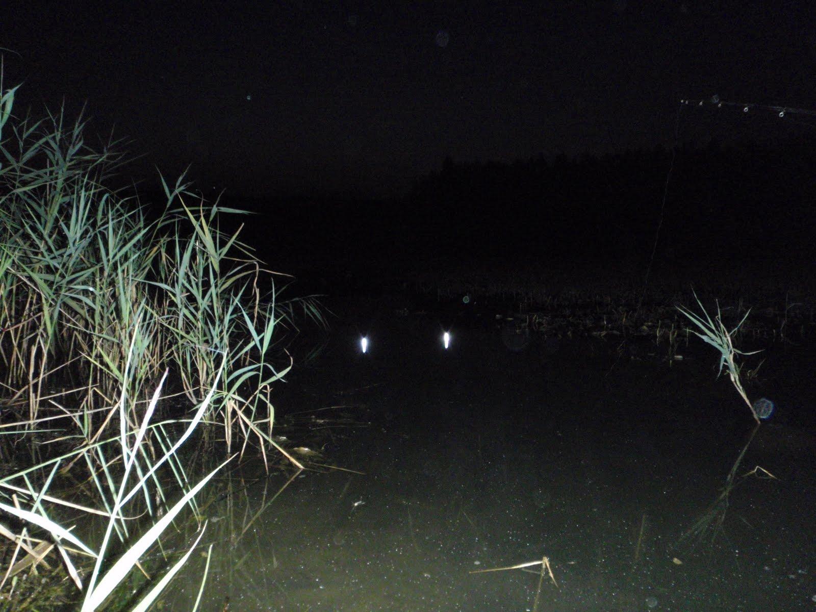 ловить рыбу ночью