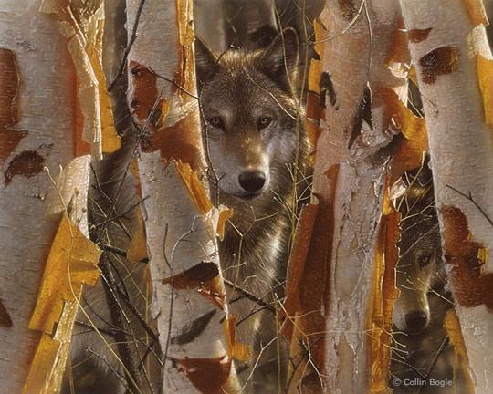 Impressionantes Pinturas de Animais Selvagens - 02