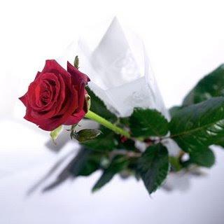 Feliz dia  :) Rosa1