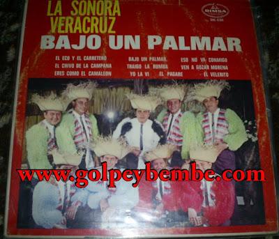 Sonora Veracruz - Bajo un Palmar4