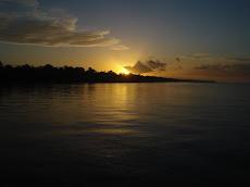 NossaCasa é Amazônia