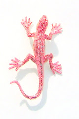 The Joyful Gecko