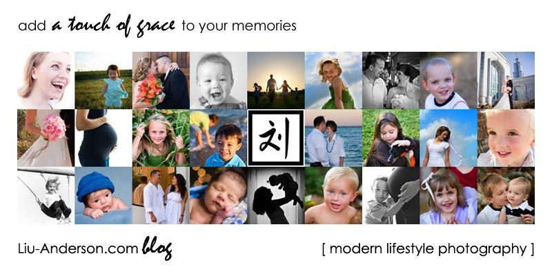 Grace Liu-Anderson Photography Blog