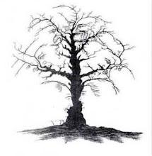 Vackert träd...