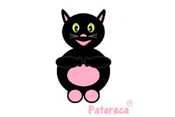 Gato Roberto