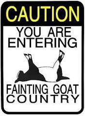 Fainting Goats R US