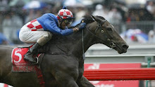 A Champion Becomes A Legend - Makybe Diva
