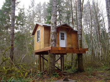 Gray and Amy's cool treehouse
