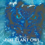 Pot Plant Owl